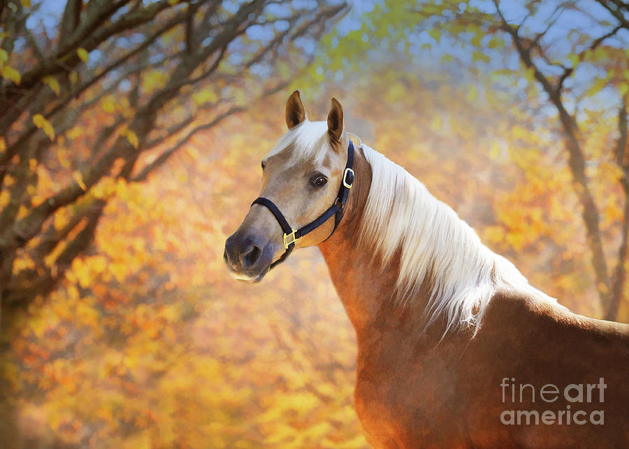 Golden Spirit by Melinda Hughes-Berland