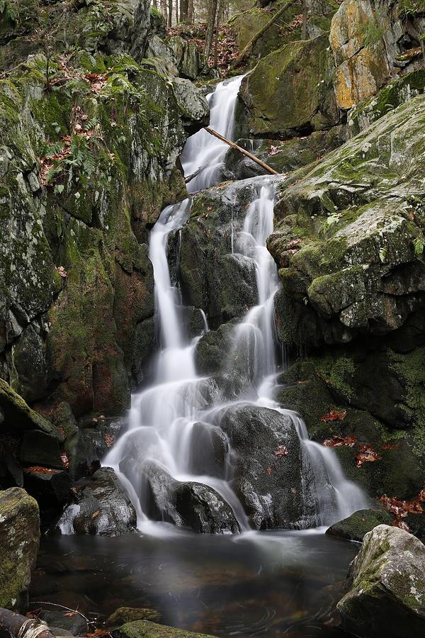 Goldmine Brook Falls, Massachusetts by Greg Parsons