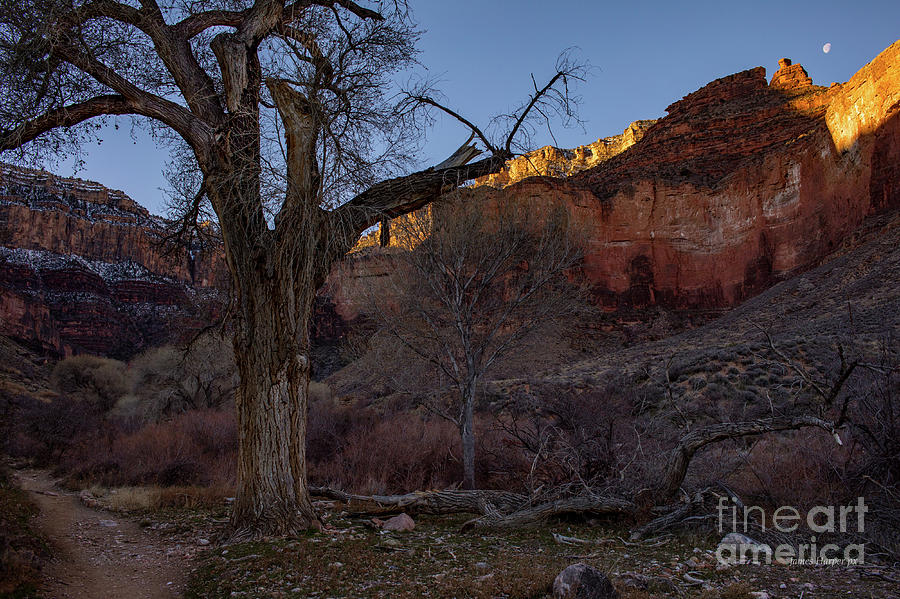 Grand Canyon 6639 by James Harper