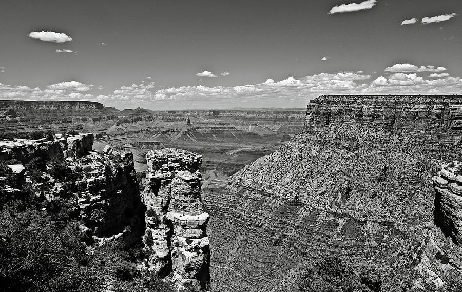 Grand Canyon Bw by RicardMN Photography
