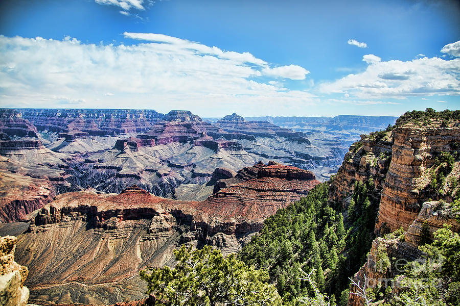 Grand View Grand Canyon  by Chuck Kuhn