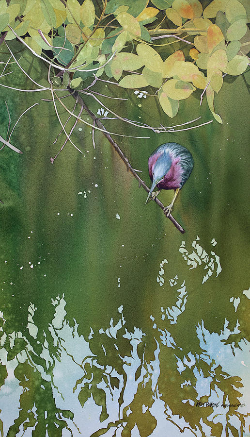 Green Heron, Red Mangrove by Kris Parins