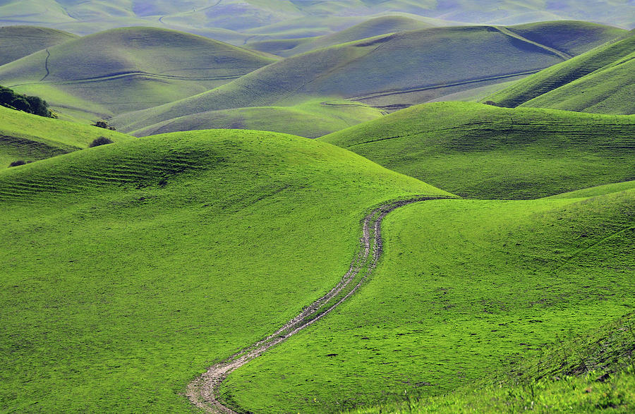 Green Hills With Road Photograph by Mitch Diamond