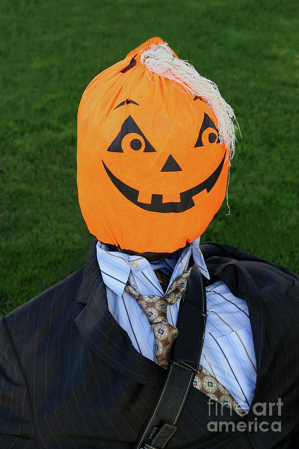 Handsome Pumpkin Head Photograph