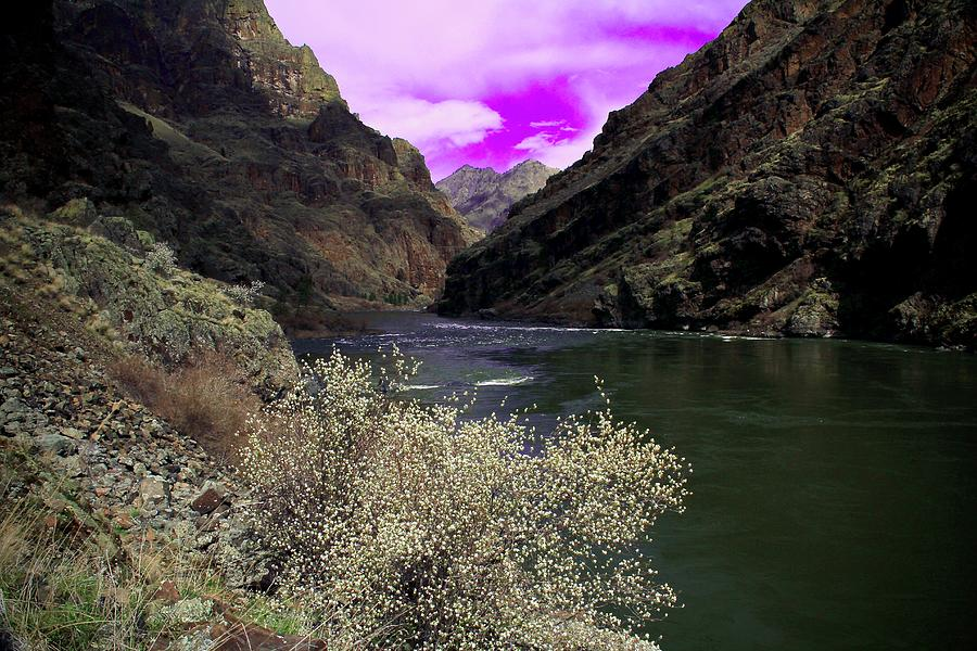 Hells Canyon National Recreation Area by Ed  Riche
