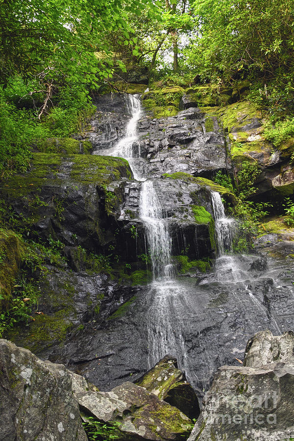 Hen Wallow Falls by Phil Perkins