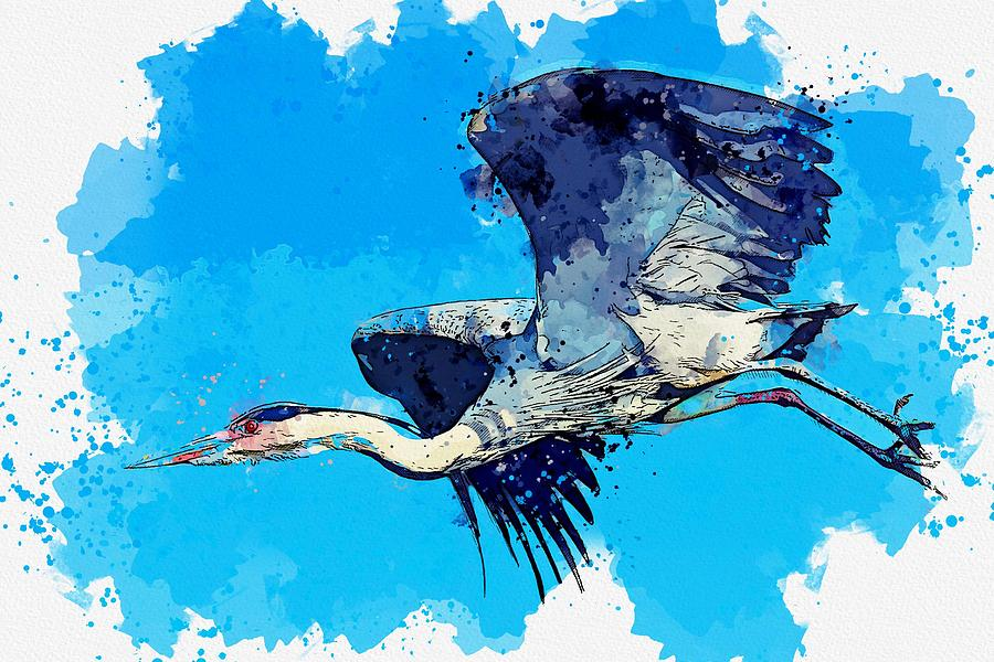 Heron Wading Bird watercolor by Ahmet Asar by Celestial Images