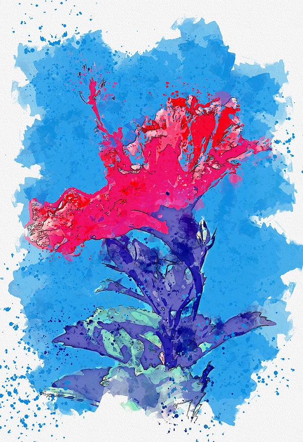 Hibiscus 2 -  watercolor by Ahmet Asar by Ahmet Asar