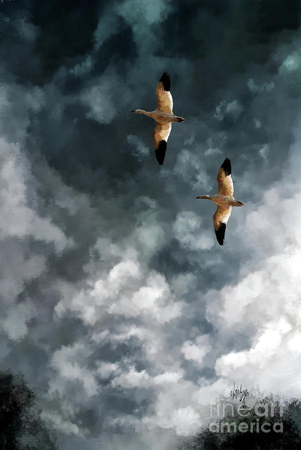High Flyin by Lois Bryan