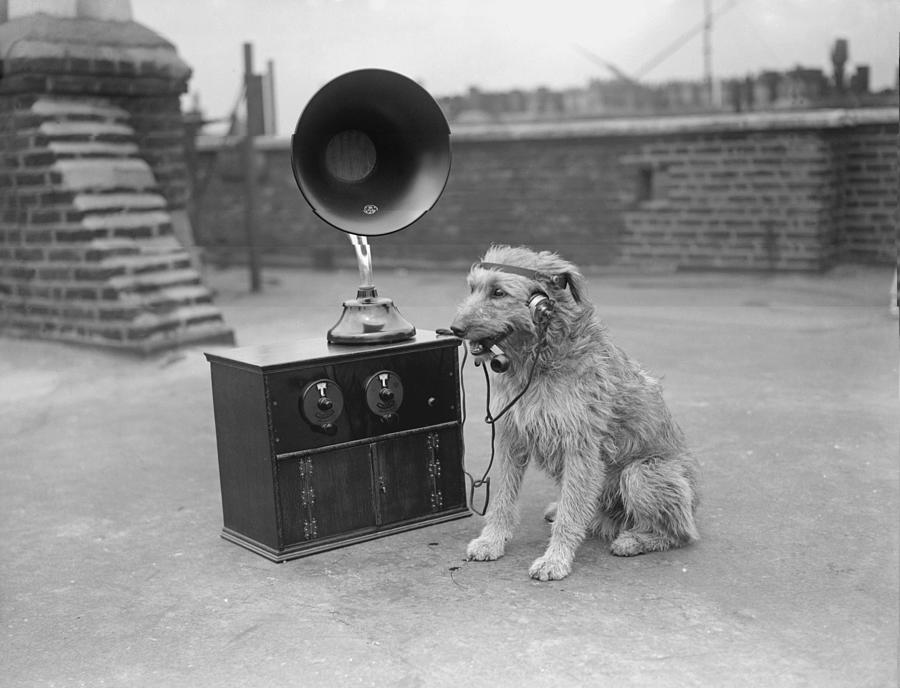 His Masters Voice Photograph by Fox Photos