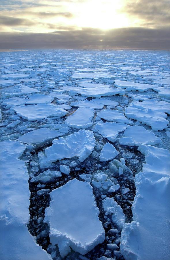 Ice Floe In The Southern Ocean, 180 Photograph by Cultura Rf/brett Phibbs