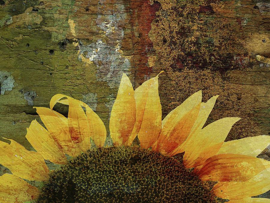 Imitating the Sun II by Char Szabo-Perricelli