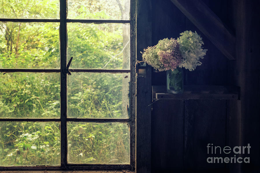 Inside the Barn by Debra Fedchin