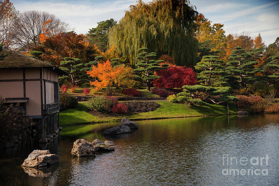 Japanese Gardens by Timothy Johnson
