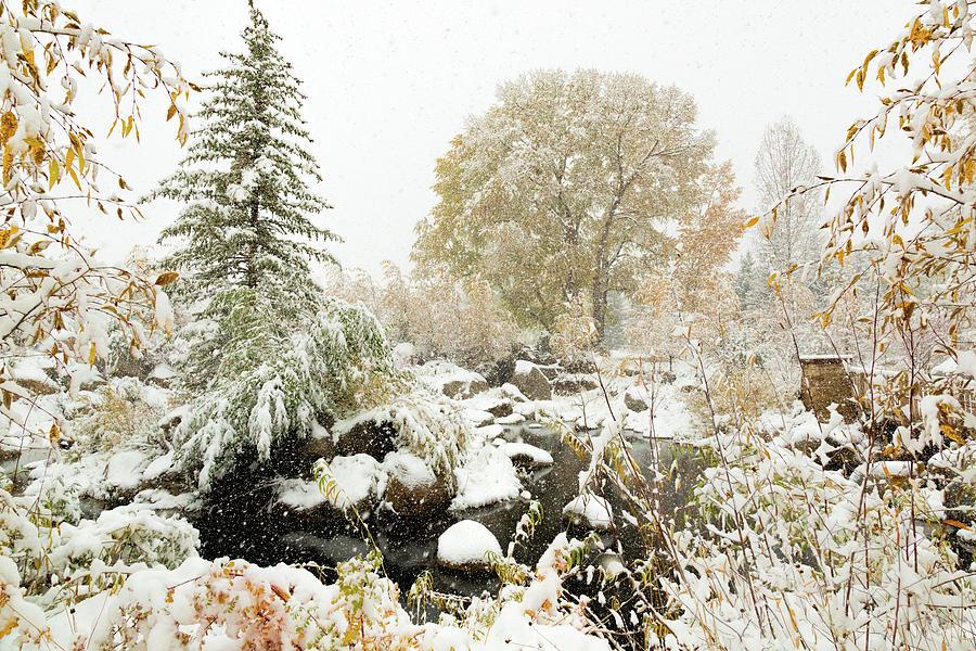 John Denver Sanctuary in Snow by Jemmy Archer