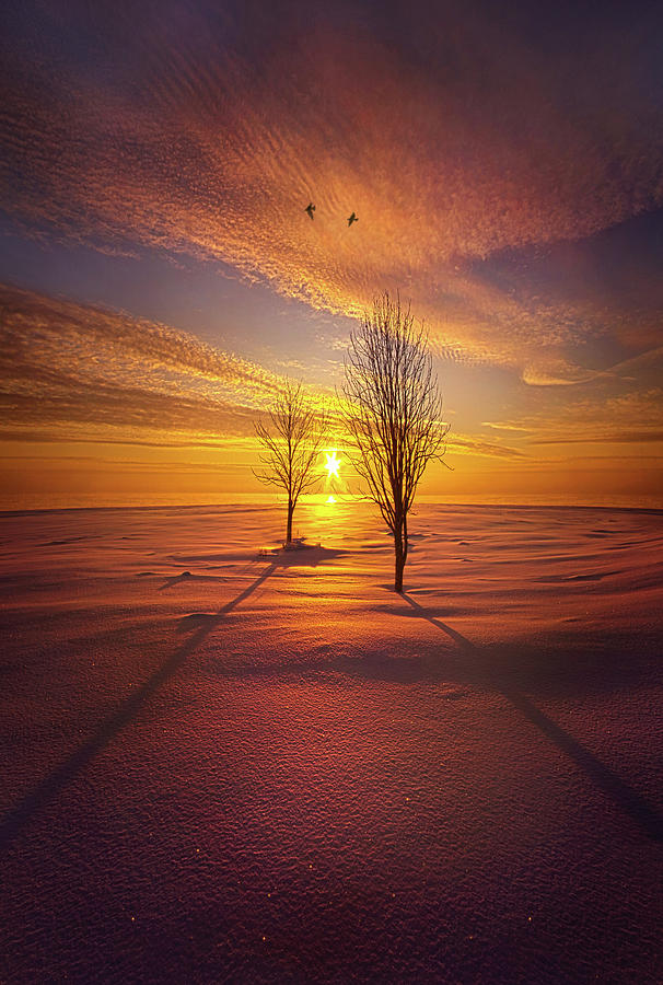 Just You and I by Phil Koch