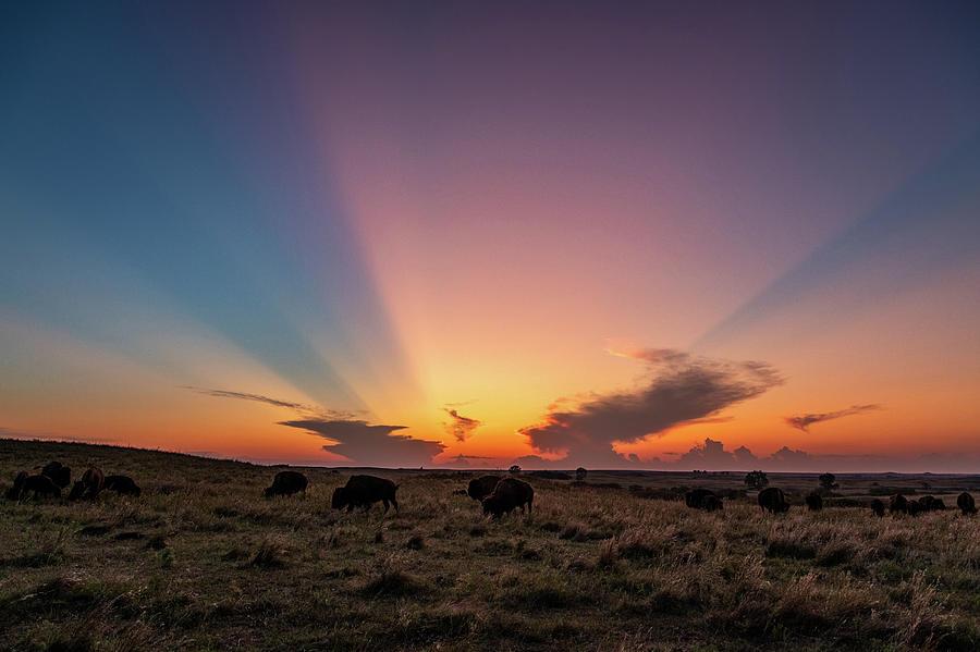 Kansas Flint Hills Sunset by Jay Stockhaus