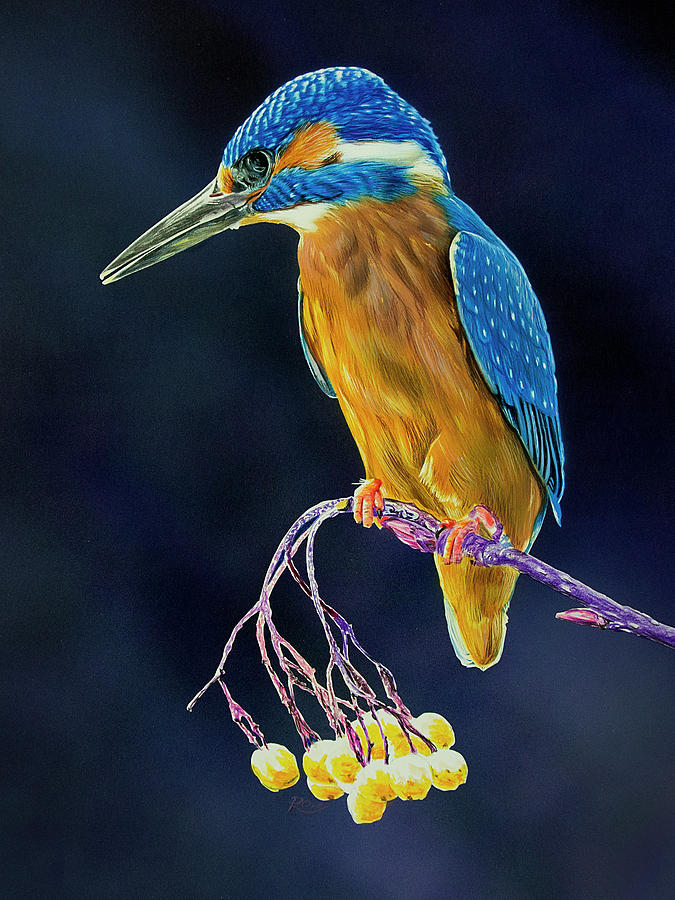 Kingfisher Painting - Kingfisher by Raymond Ore