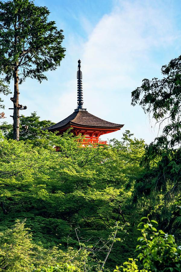 Ancient Photograph - Kyoto, Japan Taisan-ji Temple Nearby by Miva Stock