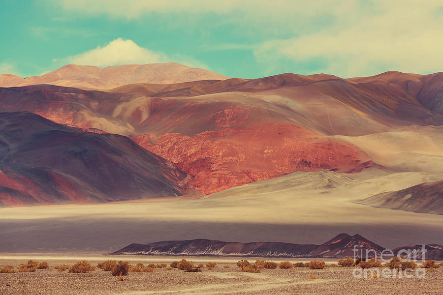 Steppe Photograph - Landscapes Of Northern Argentina by Galyna Andrushko