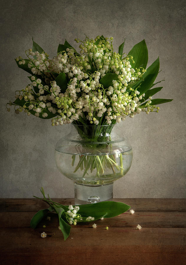 Lily of the valley by Jaroslaw Blaminsky