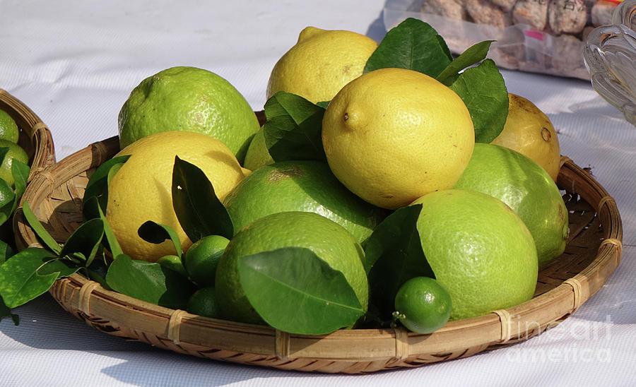 Limes and Lemons by Yali Shi