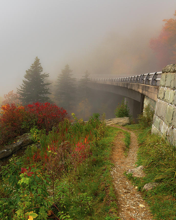 Blue Ridge Parkway Photograph - Linn Cove Viaduct - Blue Ridge Parkway by Mike Koenig