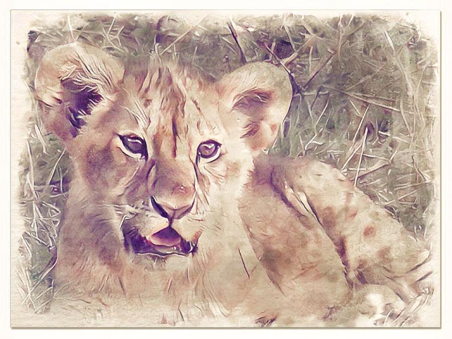 Lion cub by Gini Moore