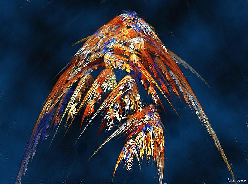 Lost Wings by Rein Nomm
