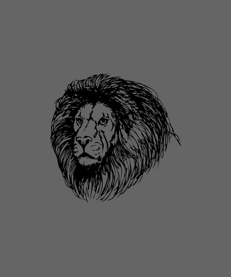 Male Lion by Dawn OConnor