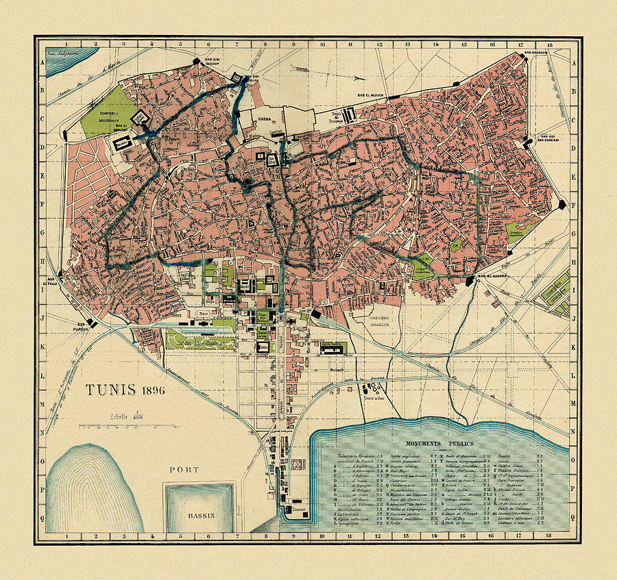 Map Of Tunis 1896 by Andrew Fare