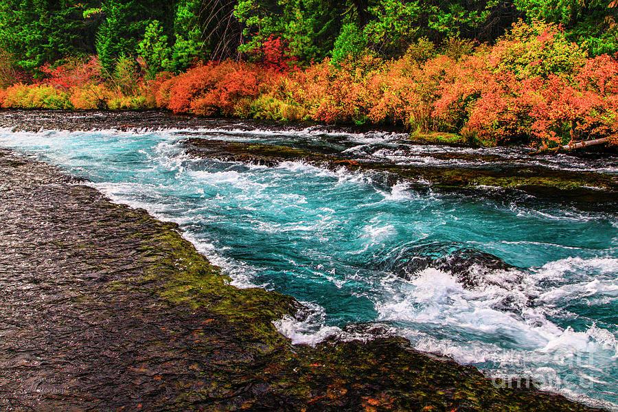 Metolius River Autumn Wall Art, Fall Foliage Prints, Fall Wall Art, Fall Leaves Wall Art, by David Millenheft
