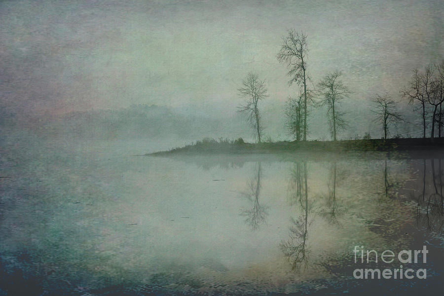 Misty Tranquility by Ken Johnson