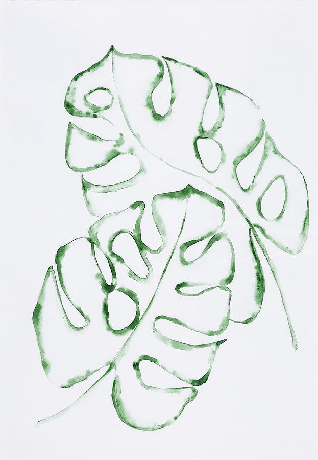 Monstera Leaves by Maria Arnaudova