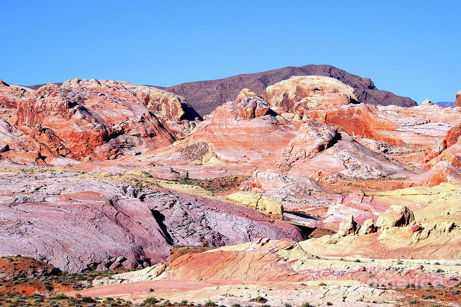 Valley Of Fire Photograph - Morning Color, Valley Of Fire by Douglas Taylor
