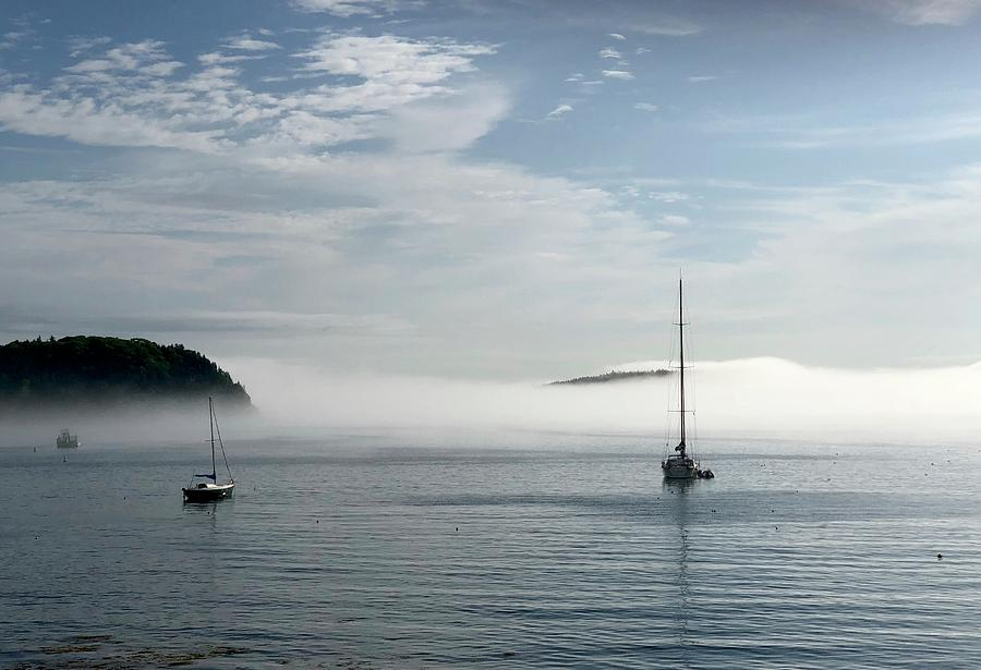 Seascape Photograph - Morning Mist On Frenchmans Bay by Dick Goodman