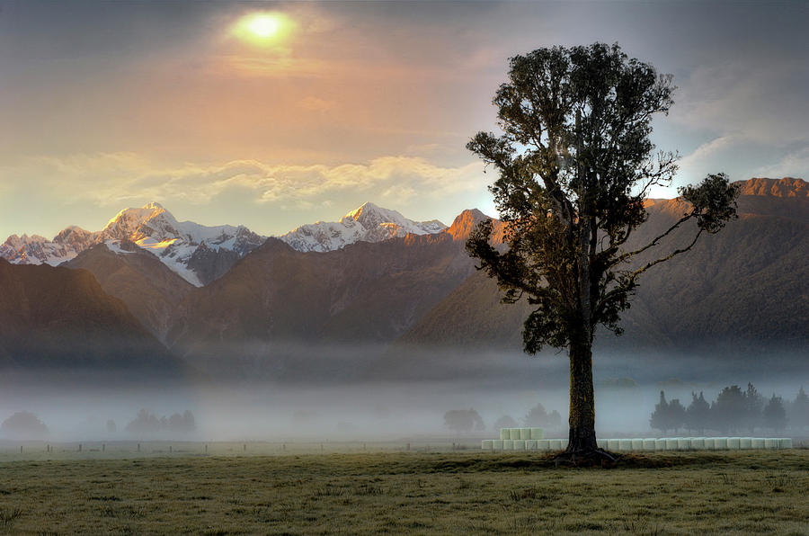 Morning Mist Photograph by Photo Art By Mandy