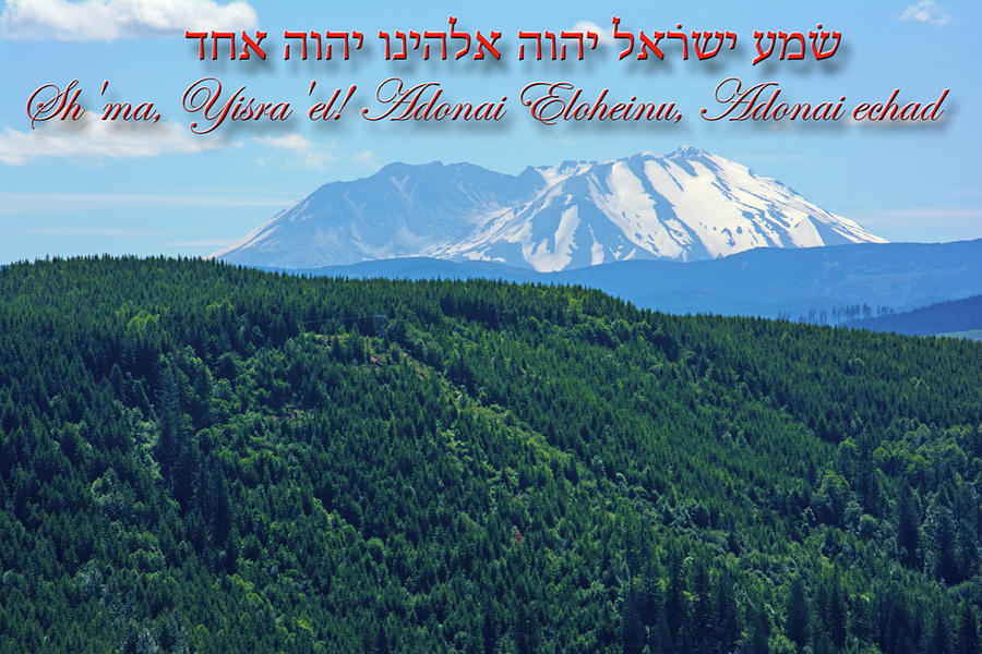 Mount Saint Helens from Paradise by Tikvah's Hope