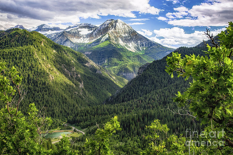 Mount Timpanogos  by Roxie Crouch