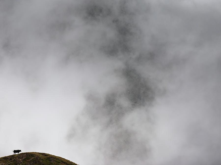 #1 Mountain Dreams by Konstantin Dikovsky