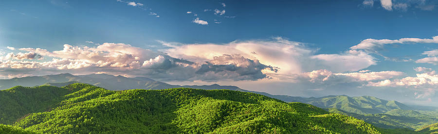 Mt. Mitchell by Joye Ardyn Durham