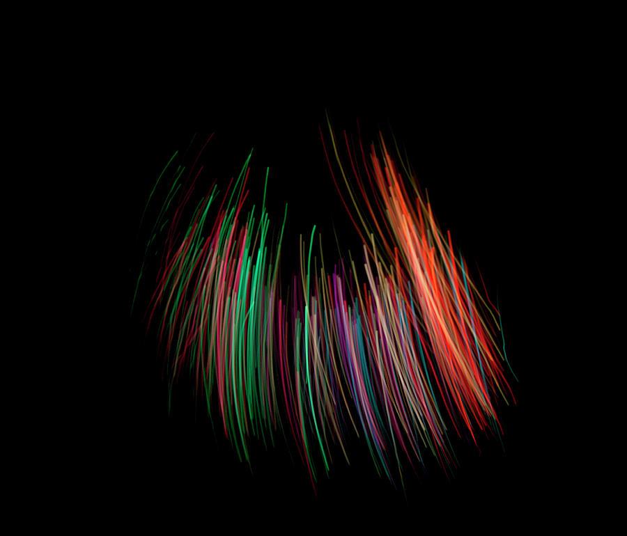 Multi Colored Fiber Optic On Black Photograph by Michael Duva