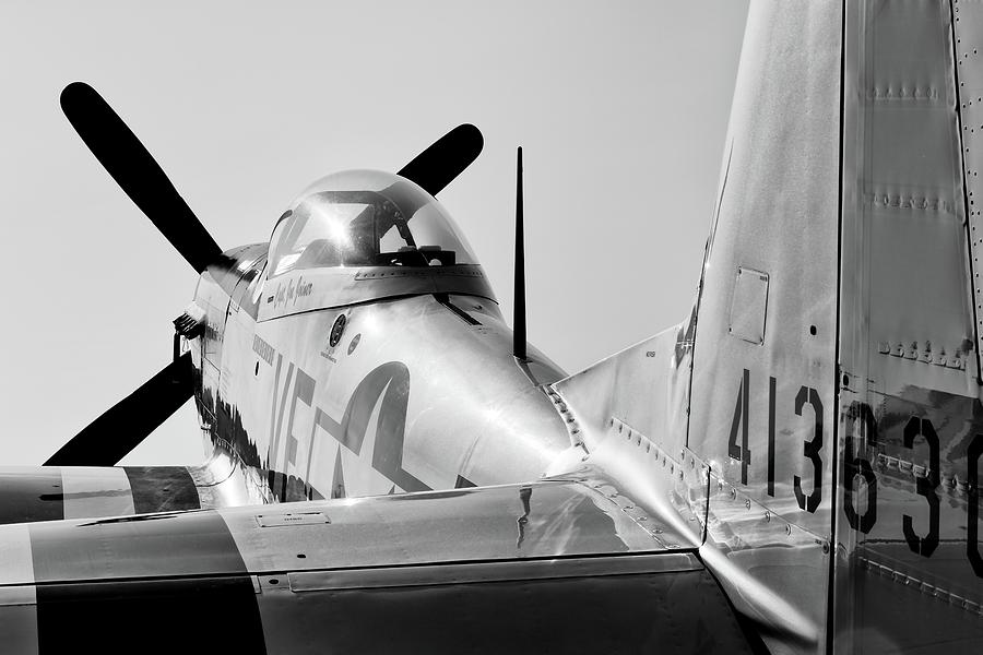 Mustang in Black and White by Chris Buff