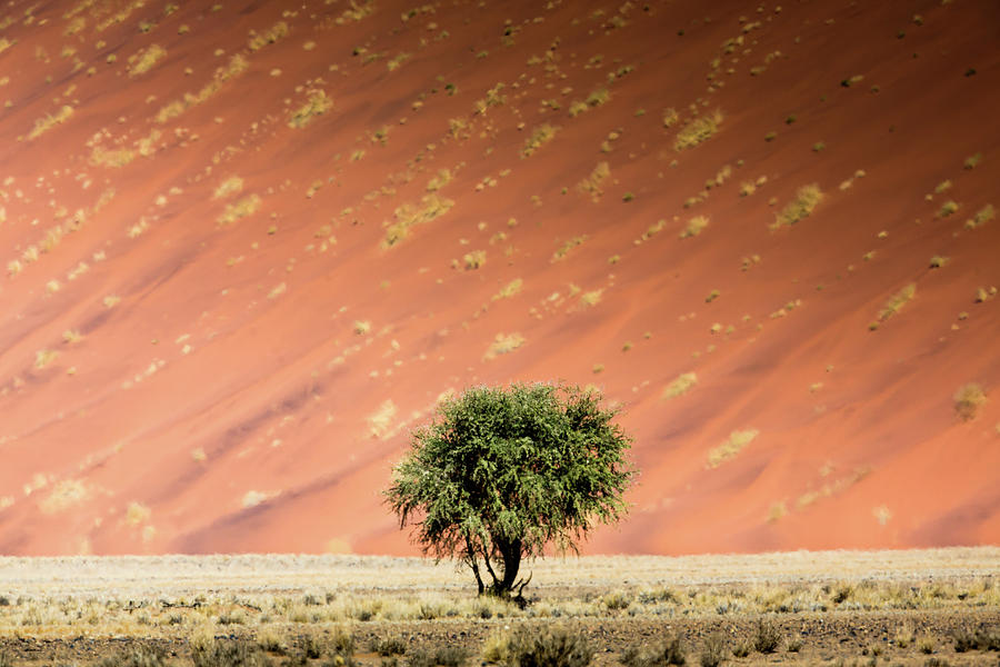 Namib Desert Photograph by Manuel Romaris