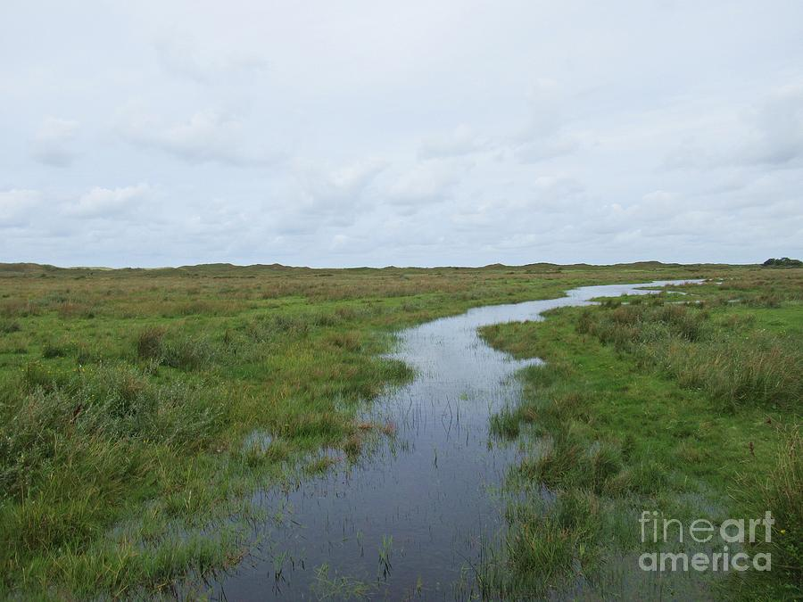 Near De Muy on Texel by Chani Demuijlder