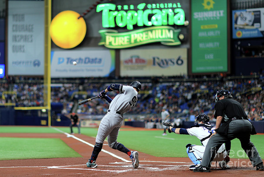 New York Yankees V Tampa Bay Rays Photograph by Mike Ehrmann