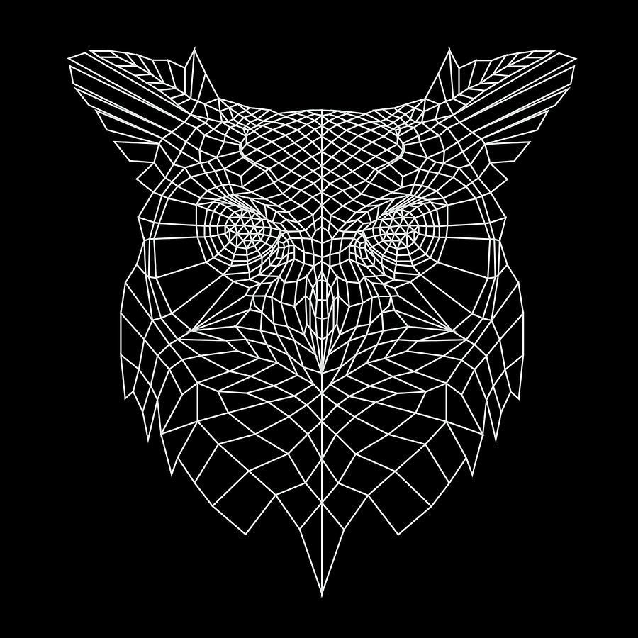 Owl Digital Art - Night Owl by Naxart Studio
