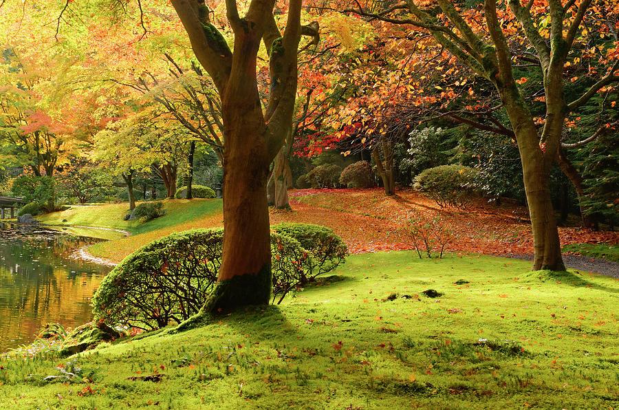 Nitobe Memorial Garden, A Traditional Photograph by Michael Wheatley