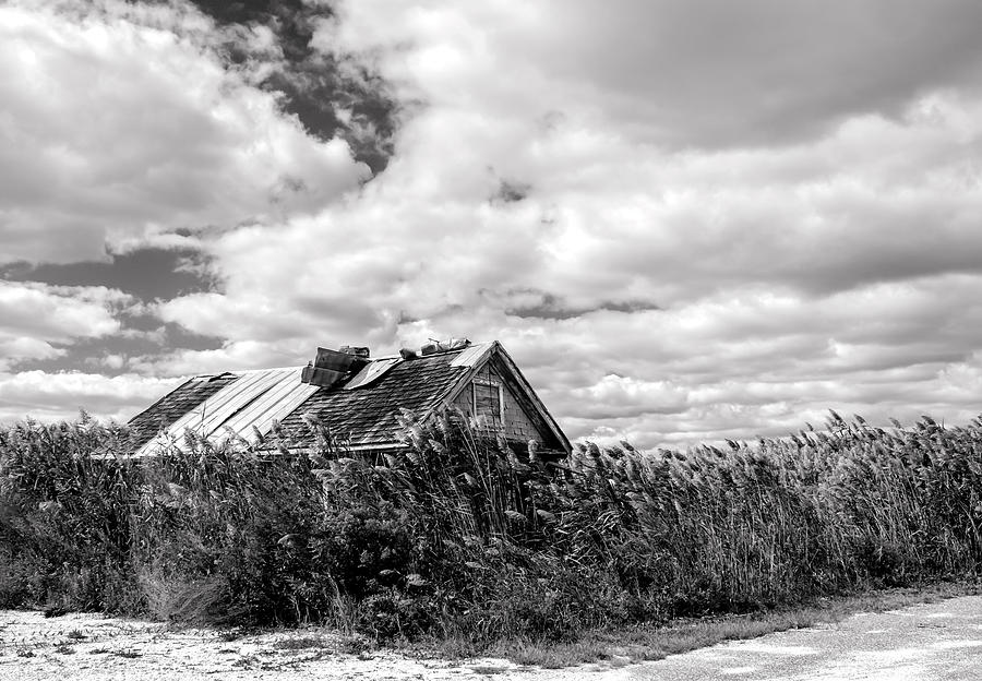 Wetlands Photograph - Old Oyster Shack by Harry Wind
