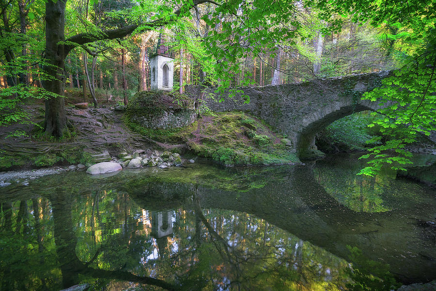 Old river bridge in Tollymore forest by Roelof Nijholt
